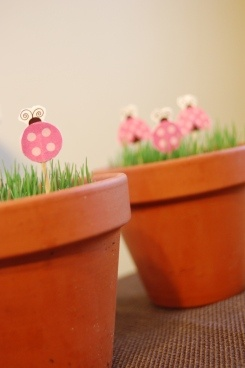 Pink and Brown Ladybug Party - cute ideas!