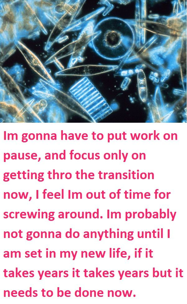 Im gonna have to put work on pause, and focus only on getting thro the transition now, I feel Im out of time for screwing around. Im probably not gonna do anything until I am set in my new life, if it takes years it takes years but it needs to be done now.