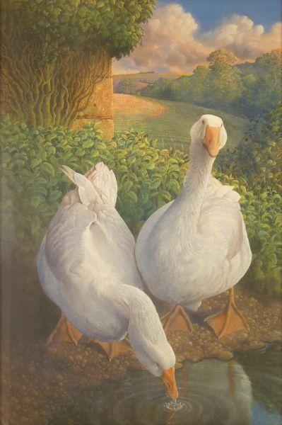 J H Lynch. Geese.