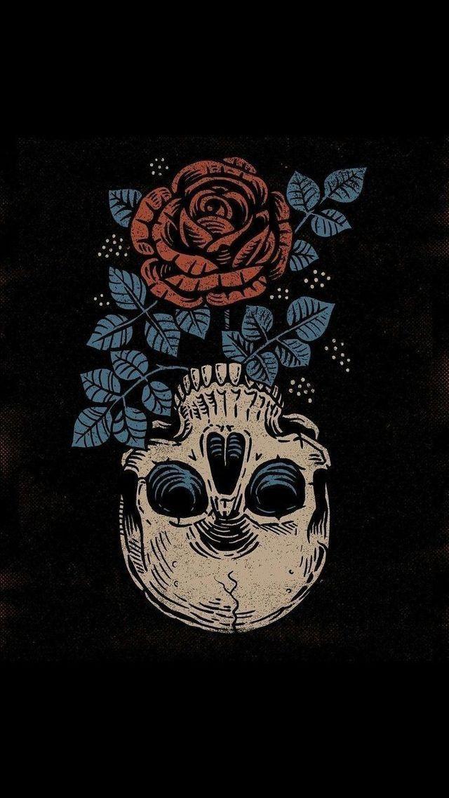 Skull And Rose Wallpaper Iphone Wallpaper Illustration Skull Wallpaper Skull Art
