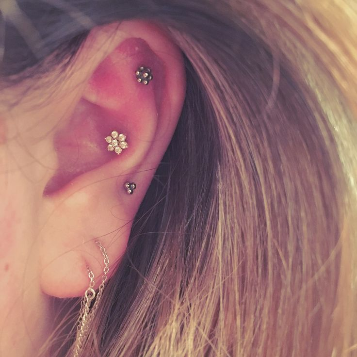 Outer conch, inner conch, helix and lobe piercing. Anatometal, BY1OAK