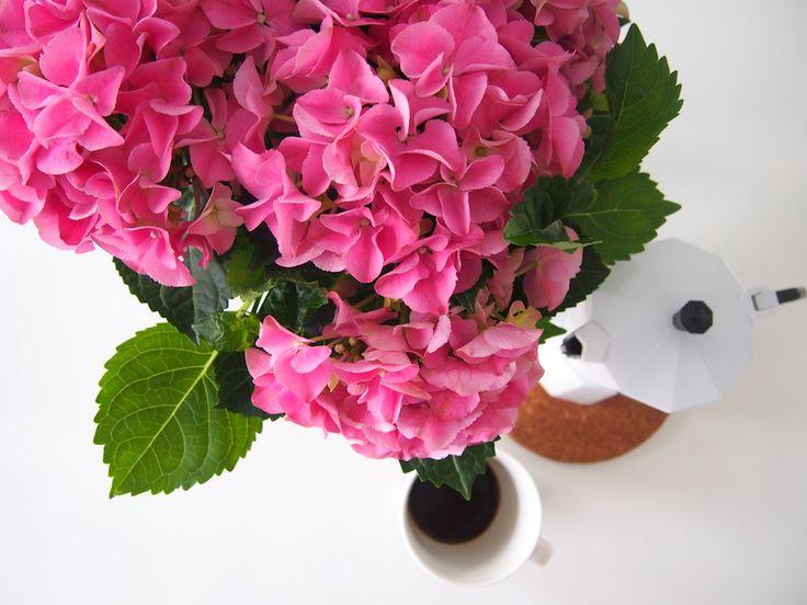 Kotitalosta http://www.stoori.fi/kotitalosta/synttaritunnelmaa/