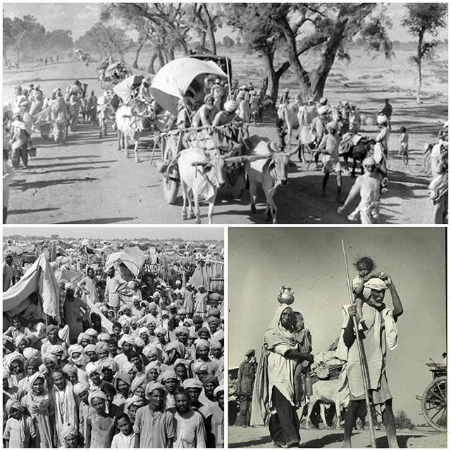 """Punjab Partition 1947 (Repost caption from Kaagazkalam on Tumblr. Discovered from @navstrakt ) kaagazkalam: Punjab Mass Migration 1947 photos by: Margaret Bourke-White for LIFE Magazine """"On the 226th and 227th days of the year two countries celebrate their Independence Day. While people triumphantly run through the streets with green banners with white crescents and tricolor banners with the Ashok wheel an entire generation remembers how they had to run through allies to avoid being killed…"""