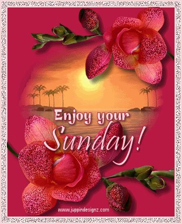 Enjoy Your Sunday love day flowers heart friend blessing days of the week sunday greeting