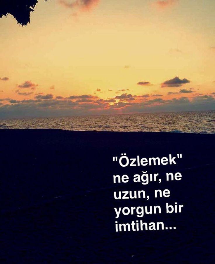 ÖZLEMEK ne ağır, ne uzun, ne yorgun bir imtihan... #kitap #kitapkurdu #kitaptavsiyesi #şiir #şiirsokakta #iyigeceler #goodnight #aşk #love #sevgi #mutluluk #happy #sokakmodasi #sokakyazıları #duvaryazıları #aşk #sevgi #mutluluk #özlemek #kavuşmak #şiir #türkiye #istanbul #derttaş #edebiyat #hasret #melek #izmir #yunusemre #mevlana #şemsitebrizi #cemalsüreya #namıkkemal