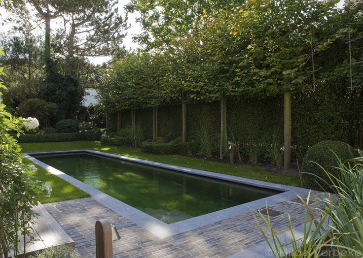 Biologisch zwembad aangelegd in mooie stadstuin ‹ De Mooiste Zwembaden