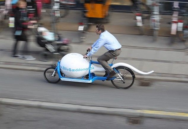 Danish sperm bank transports samples by sperm-shaped bike. (or possible this is the sperm of Chuck Norris)