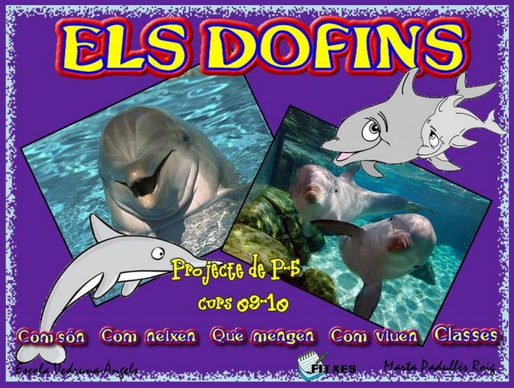 Els dofins