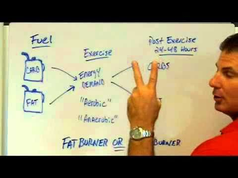 Are You A Sugar Burner Or Fat Burner With Exercise? - YouTube
