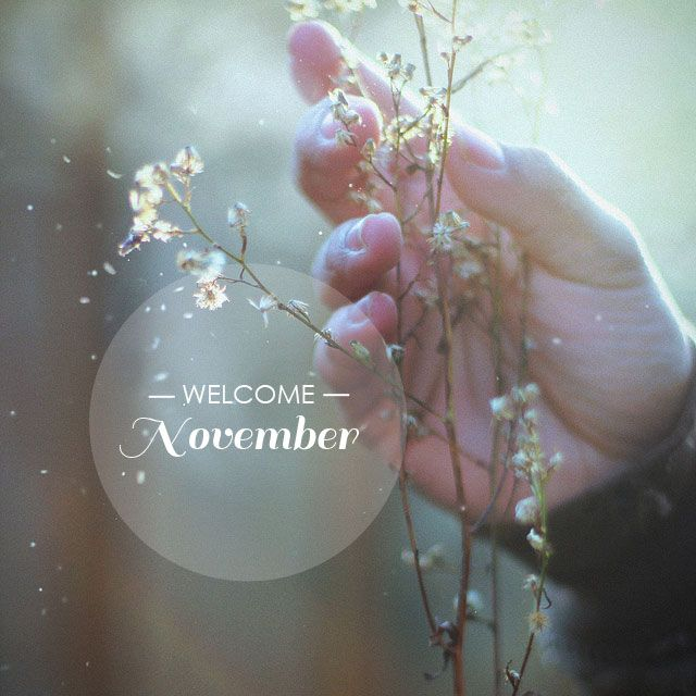 Welcoming November!