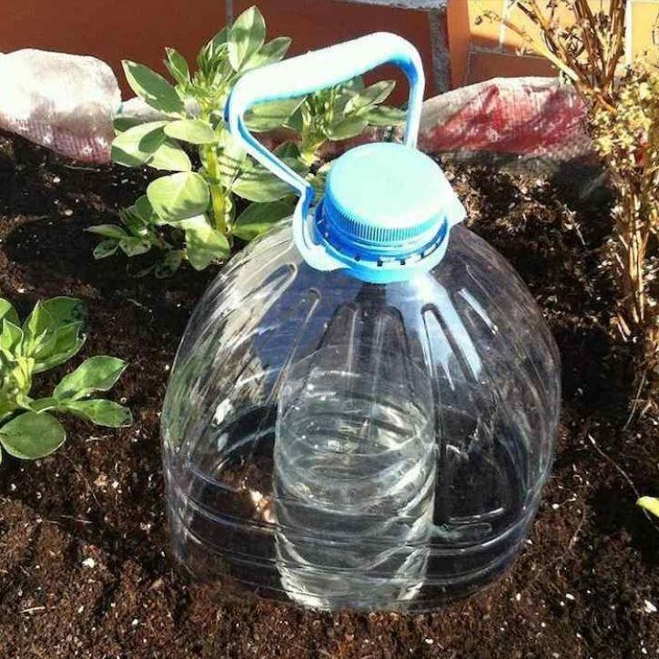 Comment faire une parfaite irrigation de plantes avec peu d'eau