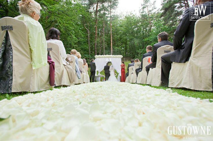 Dywan z płatków białych róż / A carpet of petals of white roses