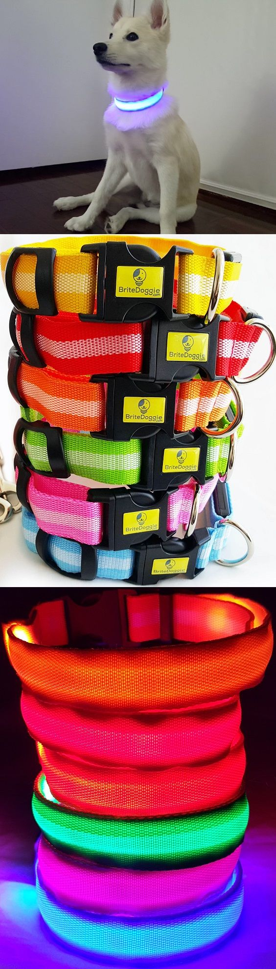 """Nighttime Safety LED Dog Collars""   These are such a great idea!   ""Be Safe, Be Seen.""  Currently FREE Shipping!  #pets"