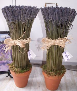 """Dried Lavender Centerpieces/Decor. May even have an extra """"life"""" in them, re-purposed as decor for the lavender and cream nursery?"""