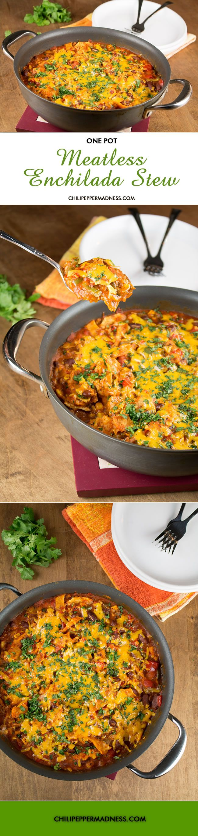 One Pot Meatless Enchilada Stew