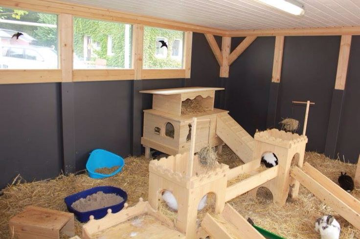 These amazing wooden castle type set ups can be used both indoors or outdoors. So much fun for little bunnies to explore. #AHutchIsNotEnough