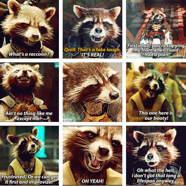 """Rocket is the heart of the movie in a lot of ways."" - James Gunn, director, ""Guardians of the Galaxy"""