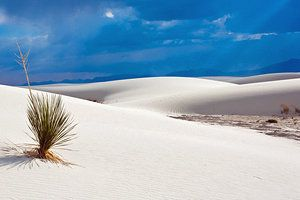 12 Top-Rated Tourist Attractions in New Mexico