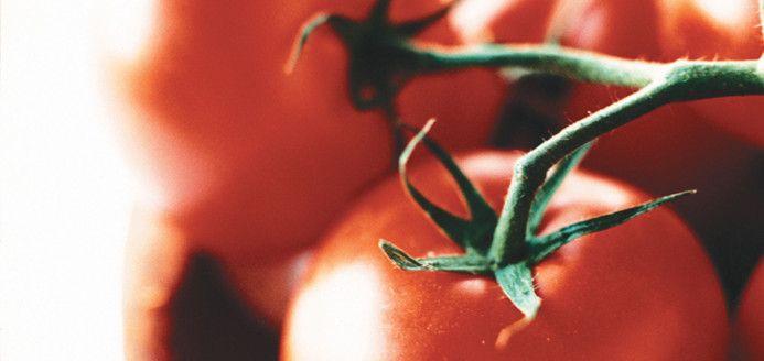 Riz aux tomates Recettes | Ricardo