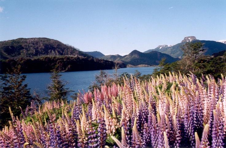 San Martin de Los Andes - Patagônia Argentina