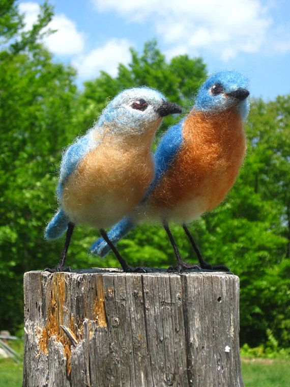 Needle felted Eastern Bluebirds, life size birds  price for 1 bird -   $115