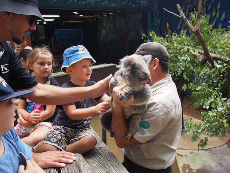 Rebel and her family dropped by #Dreamworld to #celebrate an #eighth #birthday … and what a way to celebrate! #Dreamworld for #families is #perfection.