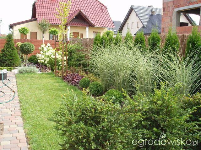 Przedwiośnie ogrodu..:) - strona 54 - Forum ogrodnicze - Ogrodowisko