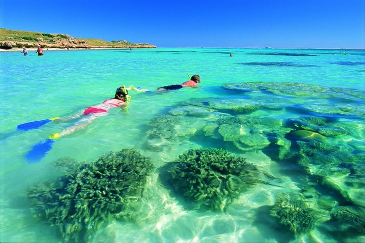 Ningaloo Reef, beauty on our doorstep & I've never been... Def on the list!