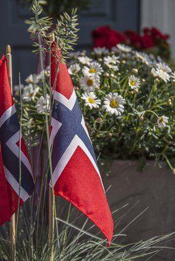 Hos oss kan du kjøpe 17. mai flagg.