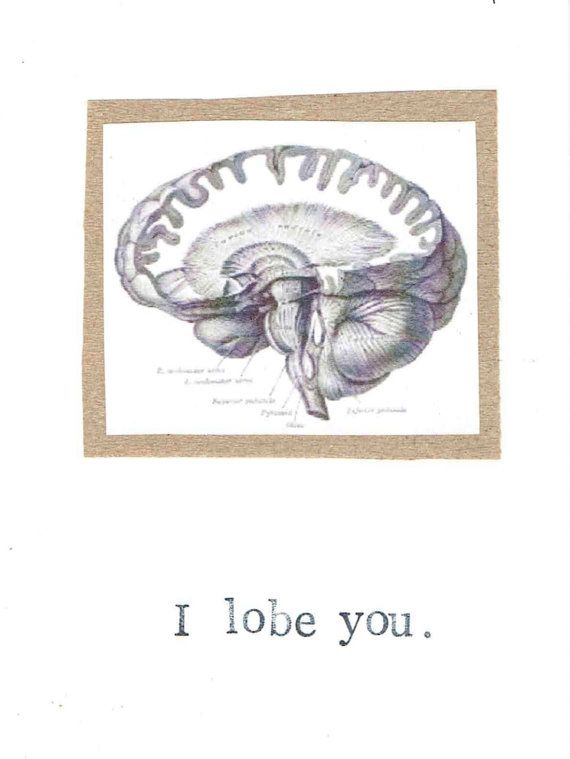 I Lobe You Card Funny Brain Anatomy Science Biology Nerdy Nerd Geekery Geeky Zombie Men Medical Humor Love Doctor Nurse Valentine For Him