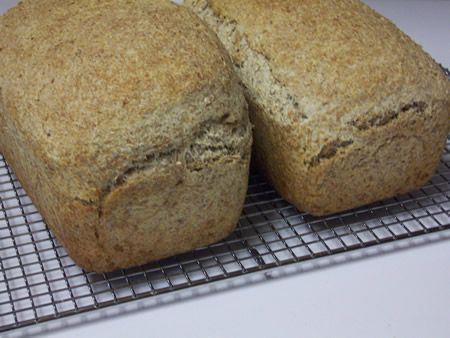 Sprouted Wheat Bread with no Flour