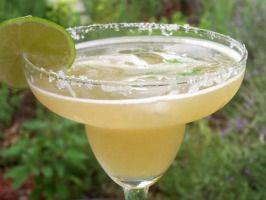 National Tequila Day, July 24 ~ go to the website for recipes to make the following:  Cilantro Grand Margarita, Queso Dip with Tequila, and Tequila Lime Chicken