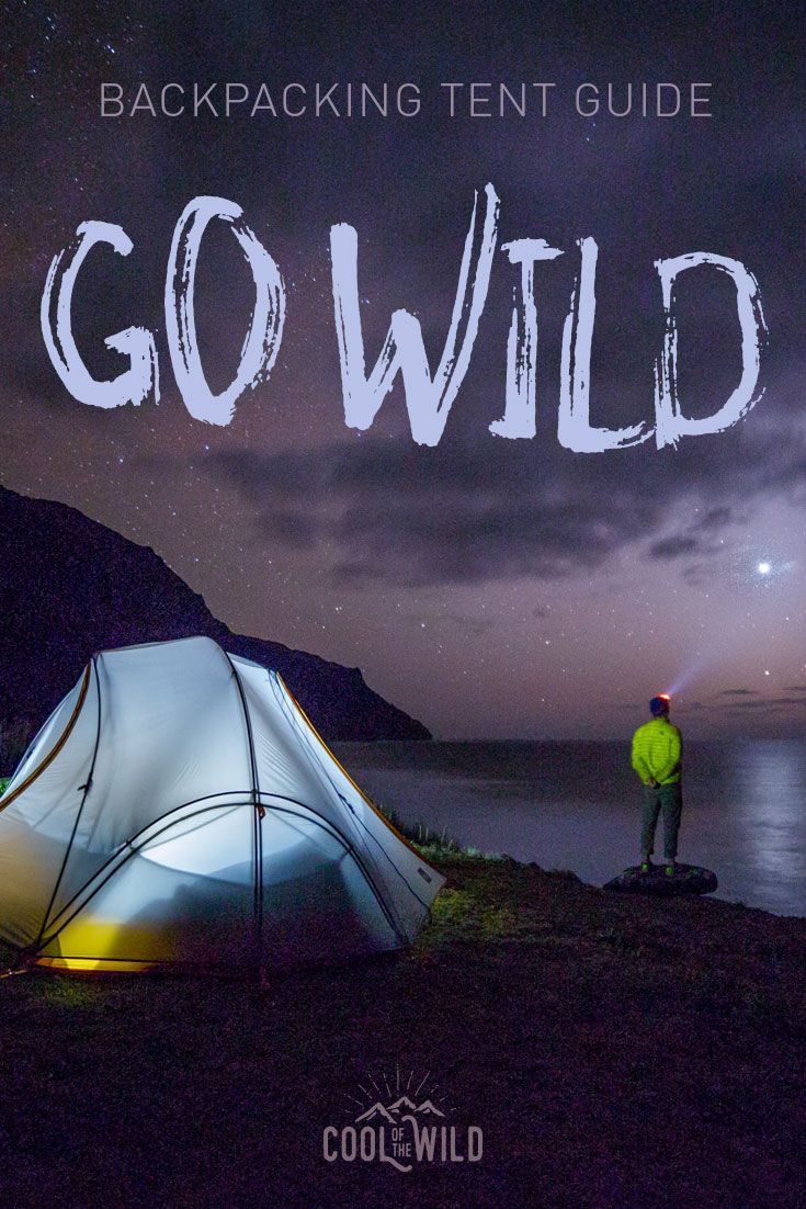 Go wild for this awesome selection of the best backpacking tents in 2016.