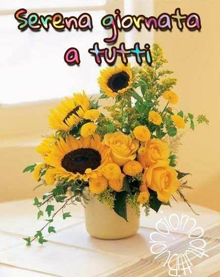 #buongiorno #buona #giornata #serena #girasoli #caffè #link #page #buongiornoatutti #facebook