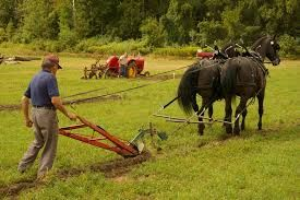 Image result for farmer plowing