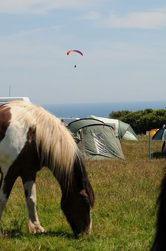 Camping. Summer. Travel. Holiday. Day Out. Family. Retreat. Tent. Go Outdoors. Maker Camping Cawsand, Torpoint, Cornwall.