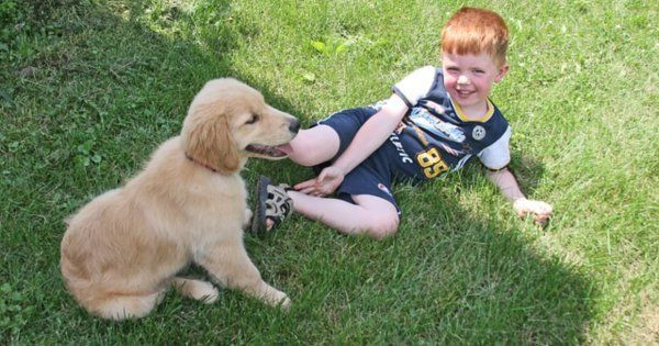 A Boy And His Dog Finding Strengths And The Capacity To Love