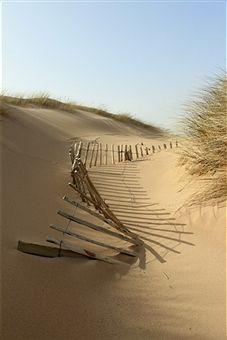 Lost fence, balmedie beach, Aberdeenshire
