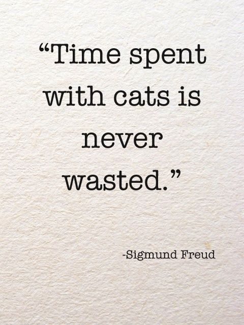 Skeptical of whether or not this is a real quote but I agree, Freud. I agree.