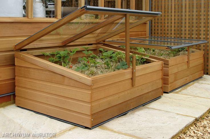 Domowa szklarnia, czyli tzw. inspekt to drewniana skrzynia bez dna, z ruchomym przeszklonym przykryciem. Zdobądź trochę desek i spróbuj sam zbudować domową szklarenkę.