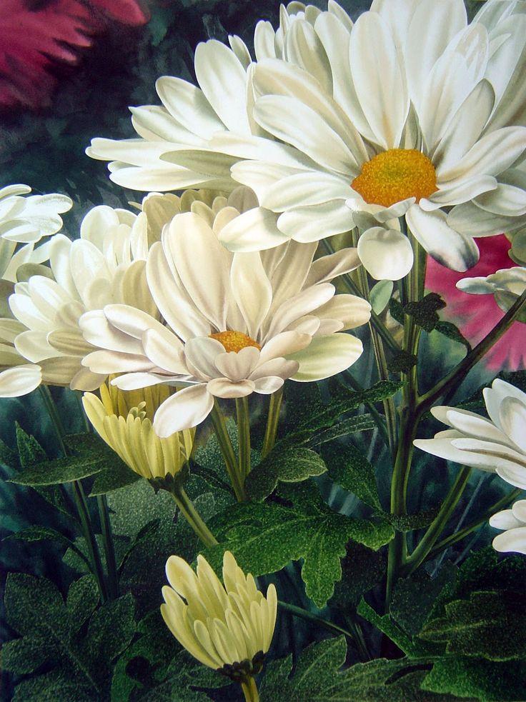 Цветы умеют говорить и передать все мысли, чувства.... Обсуждение на LiveInternet - Российский Сервис Онлайн-Дневников