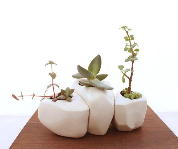 Suculentas roca trío plantadores en blanco por LandMstudio en Etsy