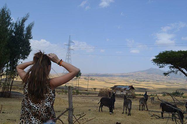 No filter needed in this view. #Therapy 🙏 ° ° ° #nofilter #donkey #mindset #therapy #view #landskape #africa #etiopia  #donkey #travel #travelgram #internationallove #world #beautiful #nature #powerfull #world #2017 #viajar #viajera #mundo #hermosa #naturalesa #buena #vista #burro by (international_love94). world #internationallove #viajar #beautiful #vista #viajera #travelgram #therapy #2017 #powerfull #mundo #nature #buena #mindset #travel #hermosa #view #landskape #burro #donkey #etiopia…