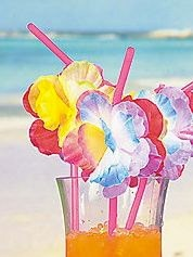 Check out our brand new flower straws ... Happy shopping