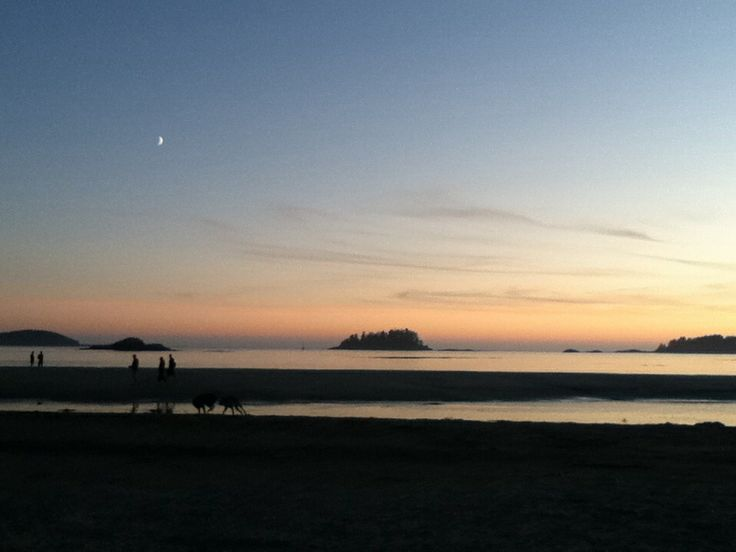 Moonlight on Tofino
