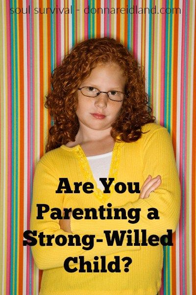 """""""Are You Parenting a Strong-Willed Child?"""""""