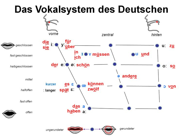 Das Vokalsystem des Deutschen - Internationales Phonetisches Alphabet. German Vowels. Phonetics. International Phonetic Alphabet.