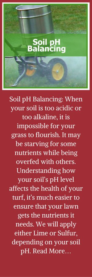Soil pH Balancing: When your soil is too acidic or too alkaline, it is impossible for your grass to flourish. It may be starving for some nutrients while being overfed with others. Understanding how your soil's pH level affects the health of your turf, it's much easier to ensure that your lawn gets the nutrients it needs. We will apply either Lime or Sulfur, depending on your soil pH. Read More…