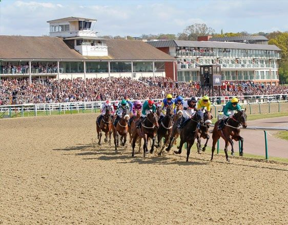 Discover details and best horse racing tips from real experts: Chelmsford City, Lingfield Park, Southwell, Wolverhampton. Learn how to win consistently at OddsDigger!