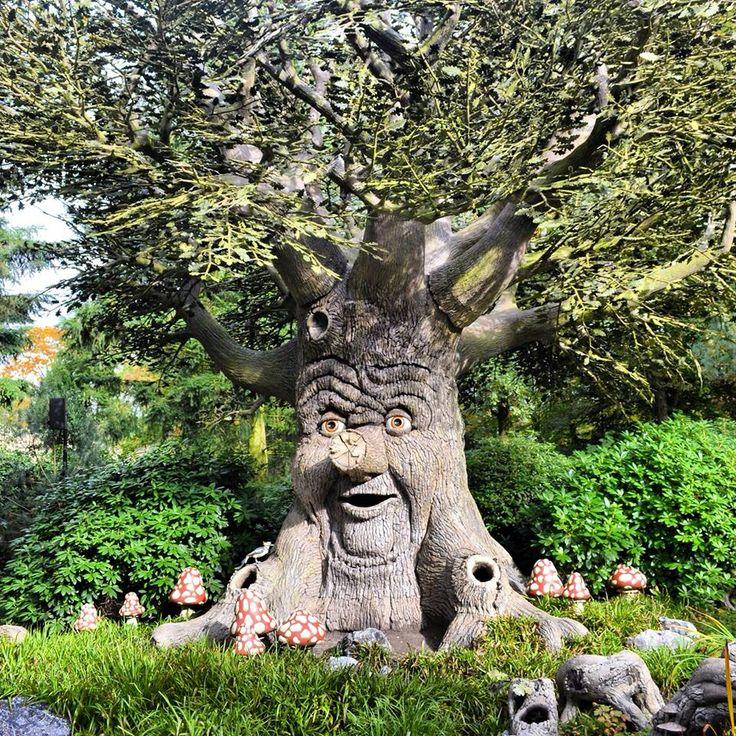 sprookjesboom  in de Efteling.